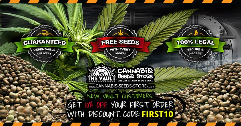 Welcome to the Vault online seed store
