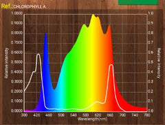 chlorophyll a reference against x bar spectrum