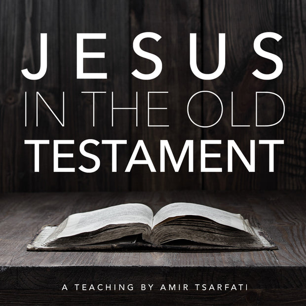 Jesus in the Old Testament PDF