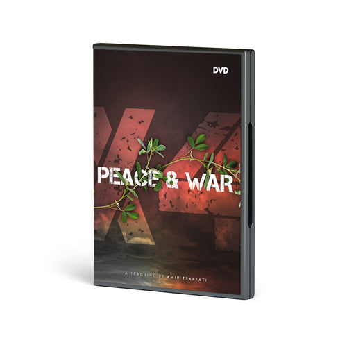 Peace and War X4