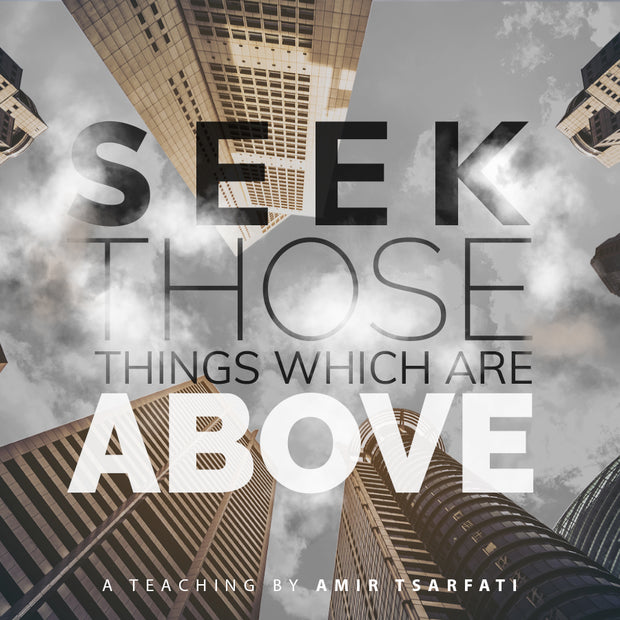 Seek Those Things Which are Above PDF