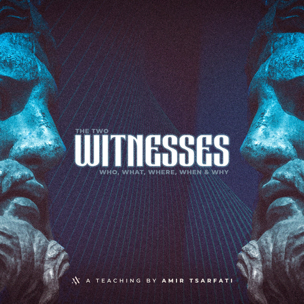 The Two Witnesses PDF
