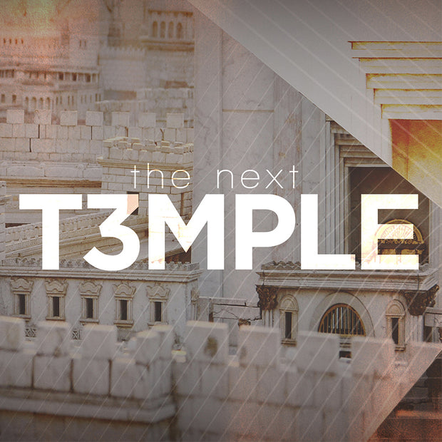 The Next Temple PDF