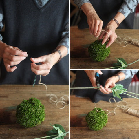 Moss ball with string for kokedama