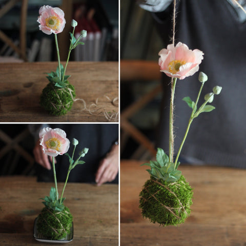 Kokedama with pink anemone