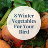 8 Winter Vegetables For You and Your Bird