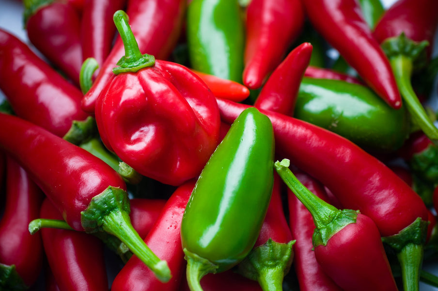 Bring on the Spice! Why Your Bird Should Try Jalapeños