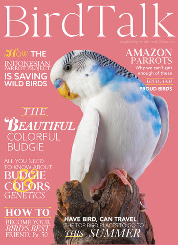 August/September 2018 Digital Edition