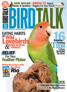 Bird Talk May 2011 Digital Edition