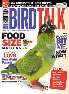 Bird Talk September 2011 Digital Edition