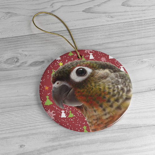 Yellow-Sided Green-Cheeked Conure Ceramic Ornaments