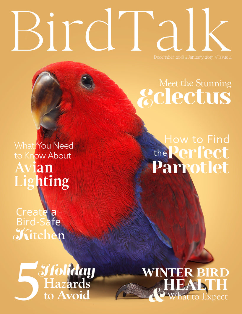 Bird Talk December/January 2018-2019 Digital Edition