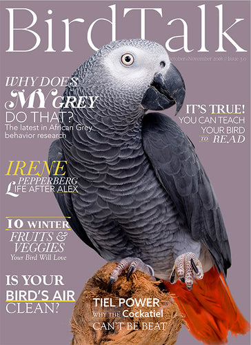 Bird Talk October/November 2018 Print Edition
