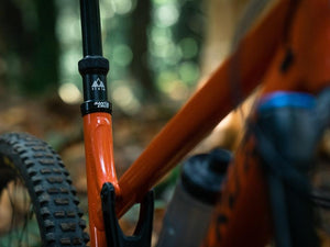 PNW Components Loam Dropper Post - The Lost Co. - PNW Components - LDP309200B - 850005672739 - 30.9mm - 200mm