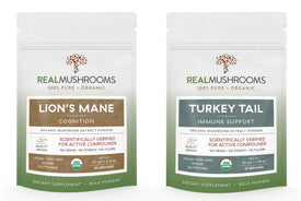 Real Mushroom Extracts - Lion's Mane & Turkey Tail - Shop Ritzfit