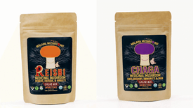 Malama Mushrooms Reishi & Chaga Cacao Mix (2-pack)