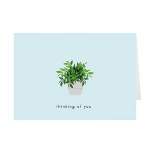 Potted Plant Thinking of You Card