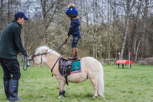 What to Expect from Badminton Horse Trials