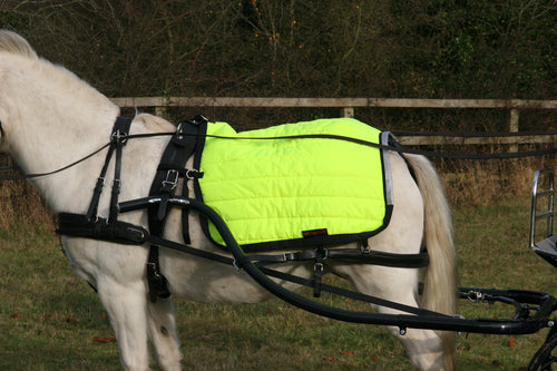 Hi-Viz Driving Quarter Sheet