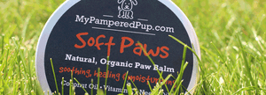 Soft Paws Natural Dog Paw Balm - MyPamperedPup.com