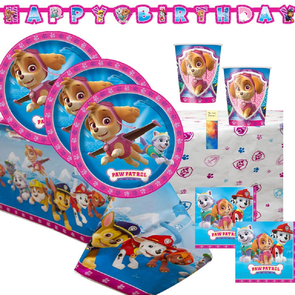 Paw Patrol Girl Pink Skye Everest Birthday Party Supplies