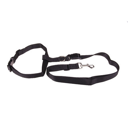 My Dog And I Sports Leash