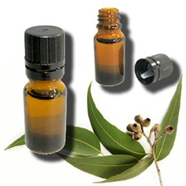 Benefits of Eucalyptus-