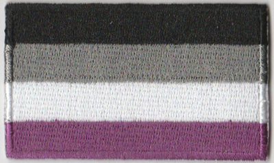 "Asexual Flag Iron On Patch 2.5"" x 1.5"""