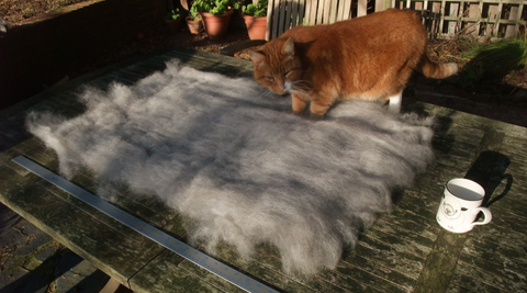 Carded Fleece      (Natural un-dyed)