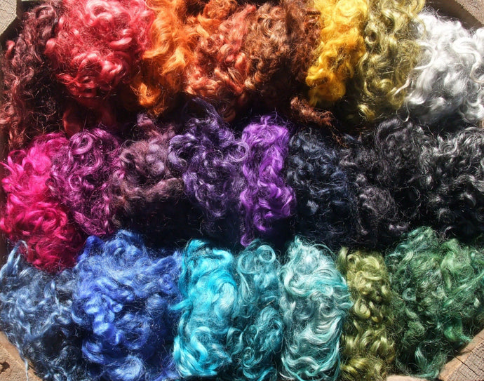 A rainbow selection of dyed Gotland locks from Felsted Fleece..