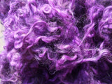 Carded Fleece (Secondary Colours)