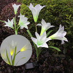 Solar Powered Garden Lily Flower Light Stakes