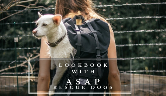 Lookbook with ASAP Rescue Dogs