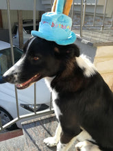 Birthday Hat