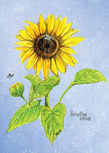 Sunflower Botanical Card