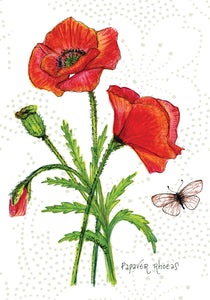 Poppy Botanical Card