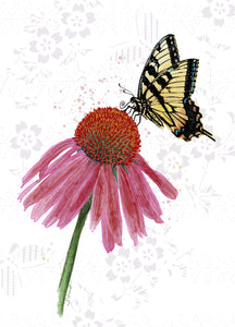 Tiger Swallowtail Butterfly with Coneflower Card