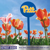 Pittsburgh Panthers Laser Cut Steel Garden Stake-Primary Logo on Blue