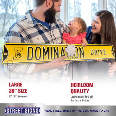 Iowa Hawkeyes Steel Street Sign with Logo-DOMINATION DRIVE