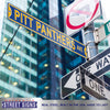 Pittsburgh Panthers Steel Street Sign-PITT PANTHERS AVE 2020