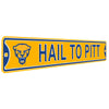 Pittsburgh Panthers Steel Street Sign-HAIL TO PITT 2020