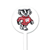 NCAA Wisconsin Badgers STEEL Garden Stake- Bucky
