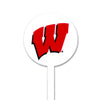 NCAA Wisconsin Badgers STEEL Garden Stake- White
