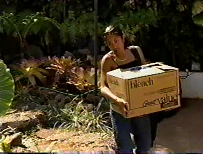 Real World Hawaii DVD - Season 8