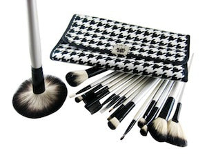 16 Piece Surfbird Diagram Professional Make Up kit Brush Set