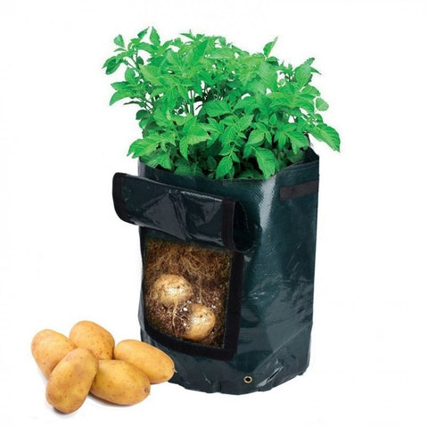 Potato Easy Grow Vegetable Bag