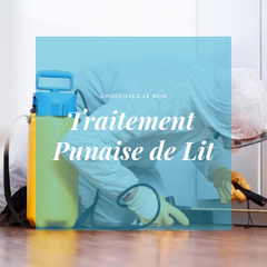 Punaise de lit traitement par Safelit