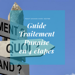 Punaise de lit Traitement guide par Safelit