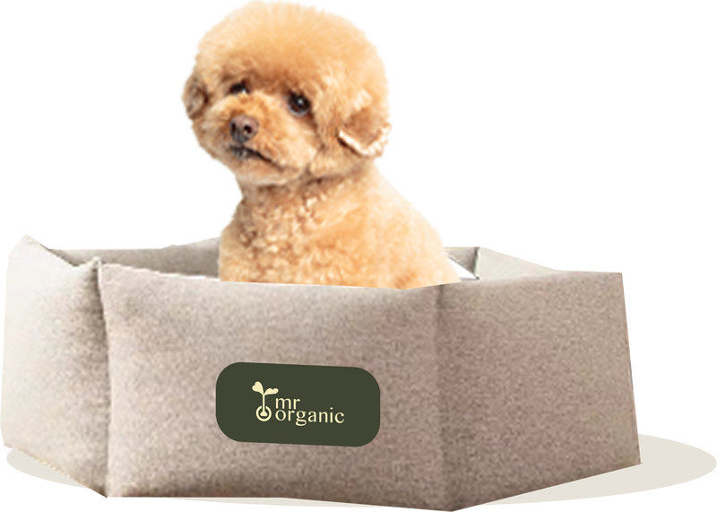 * mrorganic washable round basic dog bed (L) 有機棉可拆洗寵物床 (大)