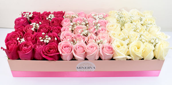 SANTA BARBARA COLOR GRADIENTS BOX - Dark pink pink and white roses